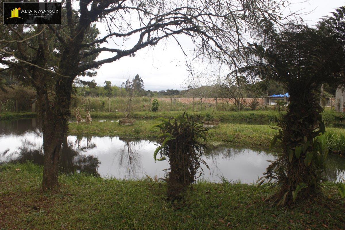 Fazenda/sítio/chácara/haras com 5 Dormitórios à venda, 3.800 m² por R$ 280.000,00