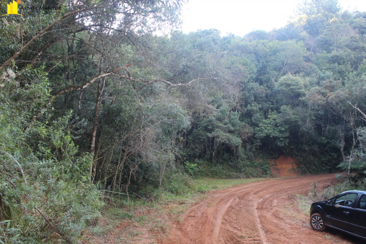 Terreno/Lote à venda, 157.300 m² por R$ 350.000,00