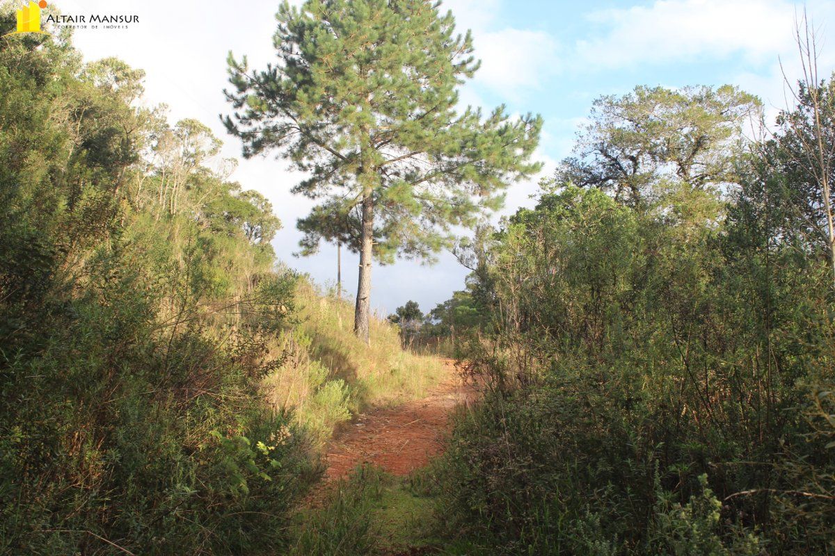 Terreno/Lote à venda, 96.800 m² por R$ 600.000,00