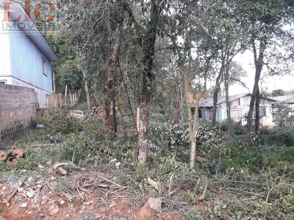 Terreno a Venda no bairro jardim campinha pretos em Quitandinha - PR.  - T-556